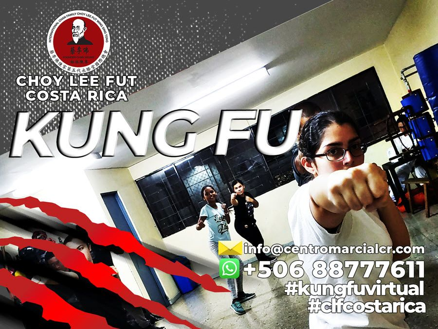 Enseñanza de la Defensa Personal y el Kung Fu