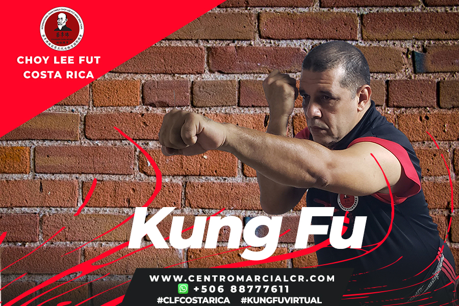 Clases Virtuales de Kung Fu Choy Lee Fut Costa Rica